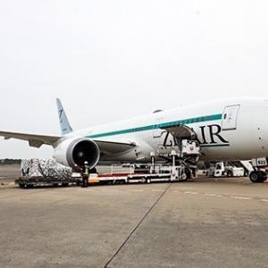 【コロナ禍で採用拡大へ】LCCジップエア…航空業界で異例の経営判断