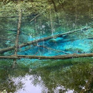 道東弾丸旅行 初日その⑨ 見事なエメラルドグリーンの神の子池。