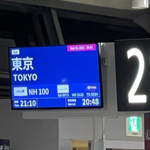"""東京に帰ってきてしまいました。高速弾丸""""日帰り""""世界遺産観光旅行"""