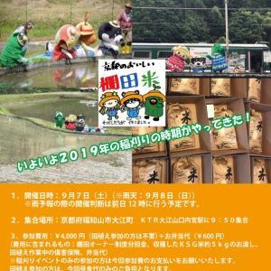 KSG学園限定イベント「KSGと棚田米をつくろう(森の京都 毛原の棚田)」の稲刈りイベント