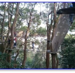 【星野リゾート】リゾナーレ熱海 森の空中散歩 小5、中2が参加