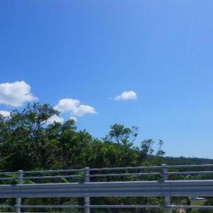 沖縄の冬の過ごし方