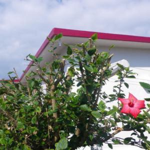 沖縄の外人住宅の売買(土地の形態)