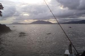 高浜へキス釣り