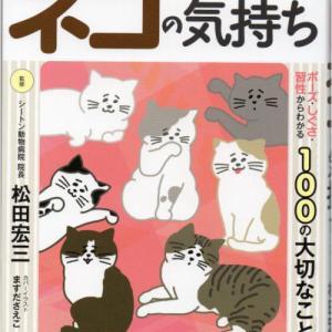 ネコの気持ち(3)