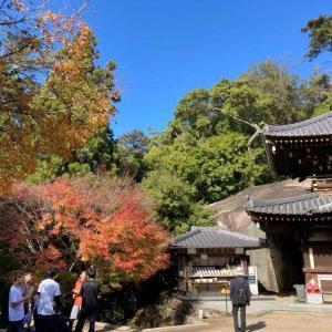 2020/11/21 安芸の宮島 弥山も紅葉しています