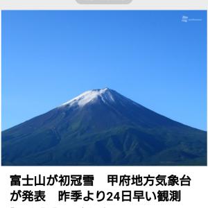junhashimoto NUKUMORI PANTS ダウン混パンツ入荷
