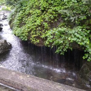 神庭の滝に行きました
