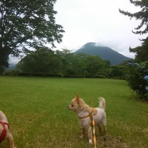 お出かけ散歩 ㏌ 志高湖