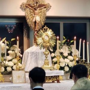 【聖体の黙想】聖体降福式はパレ・ル・モニアルで示された主の聖心のお望みに適うものである