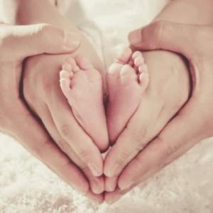 人間の命に関するカトリック教会の教えを、もう一度確認しましょう。人間の生命は「受精の瞬間に始まる」
