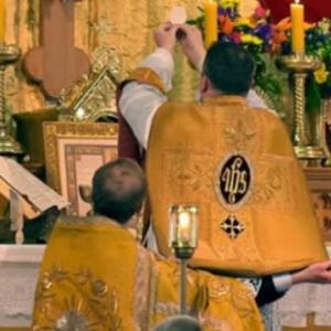 カトリック教会に、教皇様、司教様、司祭、修道者、そして信徒の方々を護って下さり、教会が、御聖体の柱に、マリア様の柱に、しっかりと結ばれますように。