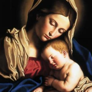 聖母マリア様は真に天主の御母です。この祝日がなぜ制定されたか知っていますか?