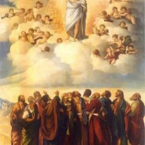 一体、イエズス様は何の為に天に・聖父の元に行ったのか?