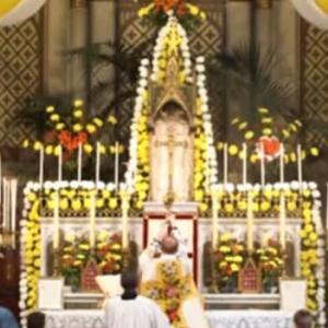 聖ピオ十世会アントワープの教会での御聖体行列 2021年6月3日