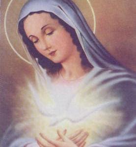聖霊によりて童貞マリアから生まれたイエズス・キリストを信じ奉る。聖霊は永遠の昔から御托身の道具としてマリア様を使う事を望み聖母を準備された。「無原罪の御孕り」だ。