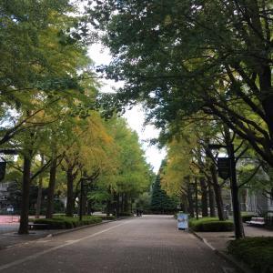 10/21 渋谷駅