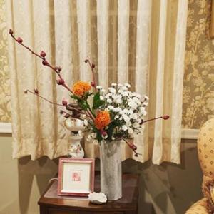 セロシア、孔雀草、けいとうをいけました:Ikebana Free Style Celosia Perennial aster