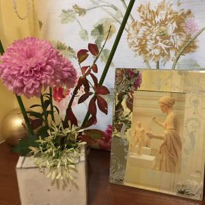 ヴァニティ:錦木 白雪草 洋菊とパピルス