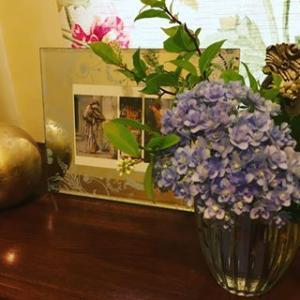 紫陽花 バーンジョーンズ 山法師の花