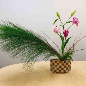 ホリデーシーズン 八重咲きの百合、大王松、レッドウィロー、ぼけの花 ; 場面を想定して S pecific seenes occasion or space