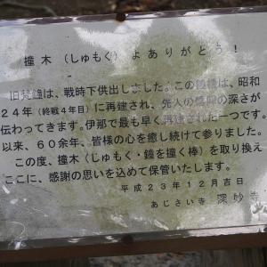 深妙寺のアジサイ 其の3(2021年06月28日 月 ☀ OM-D M1MarkⅢ)