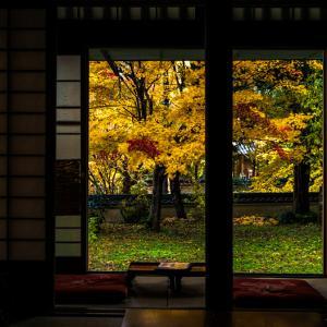 今高野山 龍華寺の紅葉