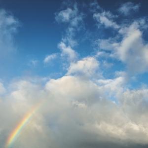 台風一過、のち、虹