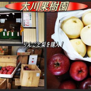 直販所の大川果樹園で旬の「りんご」と「梨」を土産に!
