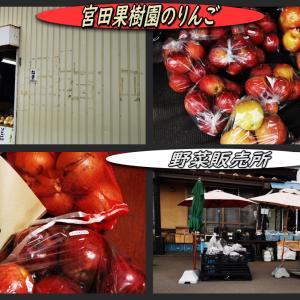 宮田果樹園のりんごと野菜販売所でちょっとだけ