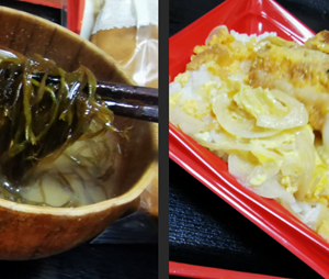 服部味噌「和風膳」の味噌で旬のふのりと「かつ丼」