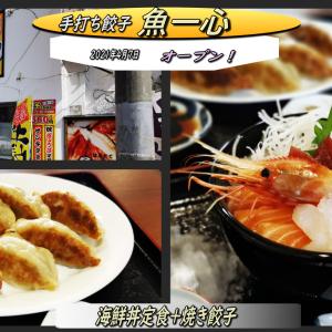 オープンした「魚一心の手打ち餃子店」で海鮮丼と餃子のランチ!