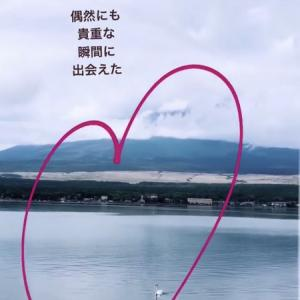 【白鳥の湖】