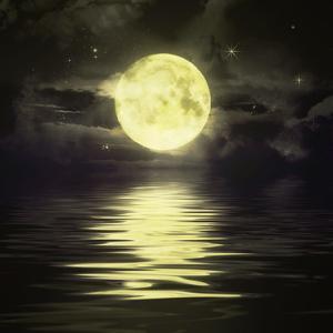 【いよいよ運命の分岐点】浄化の魚座満月 &リセットの秋分