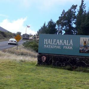 ハレアカラ国立公園と銀剣草・ネネ
