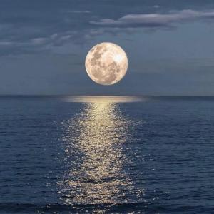 2021年5月26日はスーパームーン皆既月食