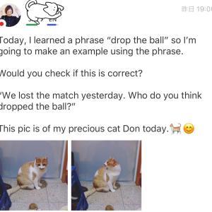 drop the ball:ボールを落とす?