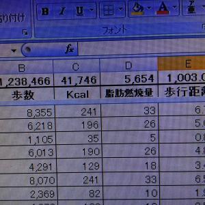 治療の為のウォーキングが1,000km を突破(^-^)