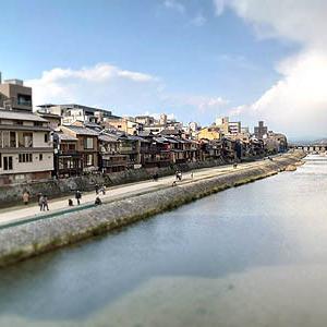 「京の三日月とねこ」。