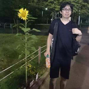 ザイキ vs 向日葵