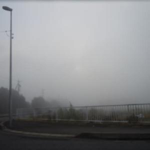 霧・・!!( ; ロ)゚ ゚