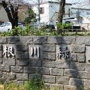 根川緑道 ②