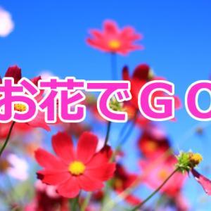 運動も学びも楽しさも一気に全部取り入れるお得な韓国サイト活用術