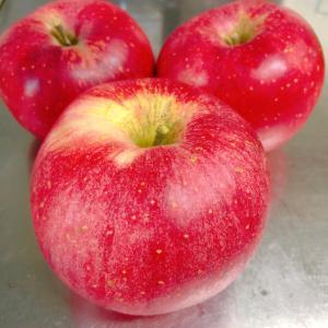 喜多方のりんご