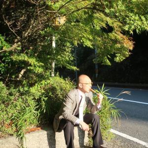 2020年奈良旅行記(その2)について☆