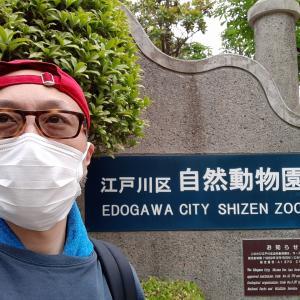 二十四節気と江戸川区自然動物園と屋号とオオアリクイについて☆