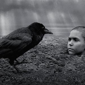 異端の鳥 -1- The Painted Bird