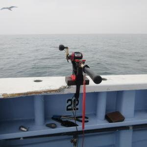 ★鹿嶋 不動丸ヒラメ釣行 朝一しか潮流れずキロ止まりの小型3枚も脂ノリノリの寒ヒラメでした♪