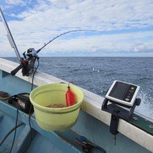 ★新潟真鯛⇒電気ワラサリレー釣行~色んな失敗もありましたがイナワラ・イナダはGET♪
