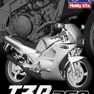 ヤマハ TZR250(1KT)